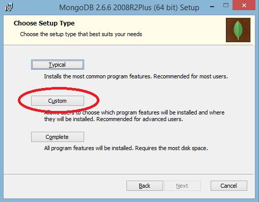 MongoDB Customize Installer